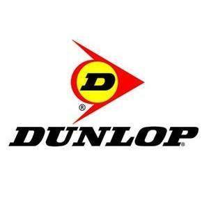 Dunlop-India-Ltd