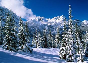 Regler for vinterdæk i udlandet.